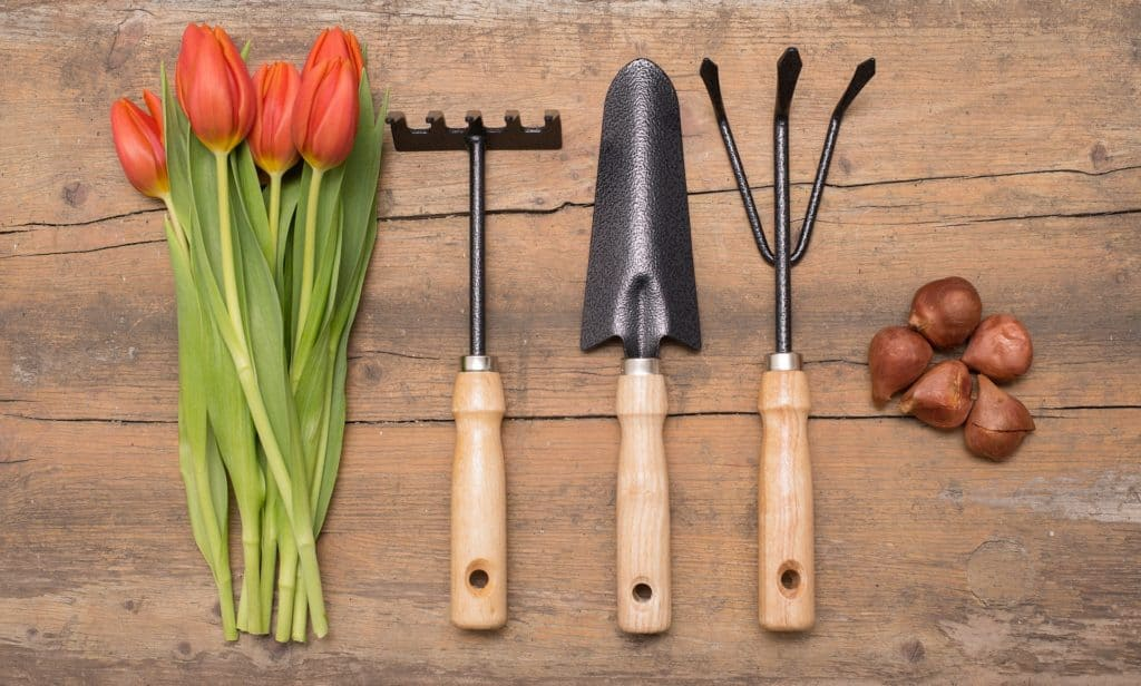 Essential Tools For Gardening: A Guide To What U Need