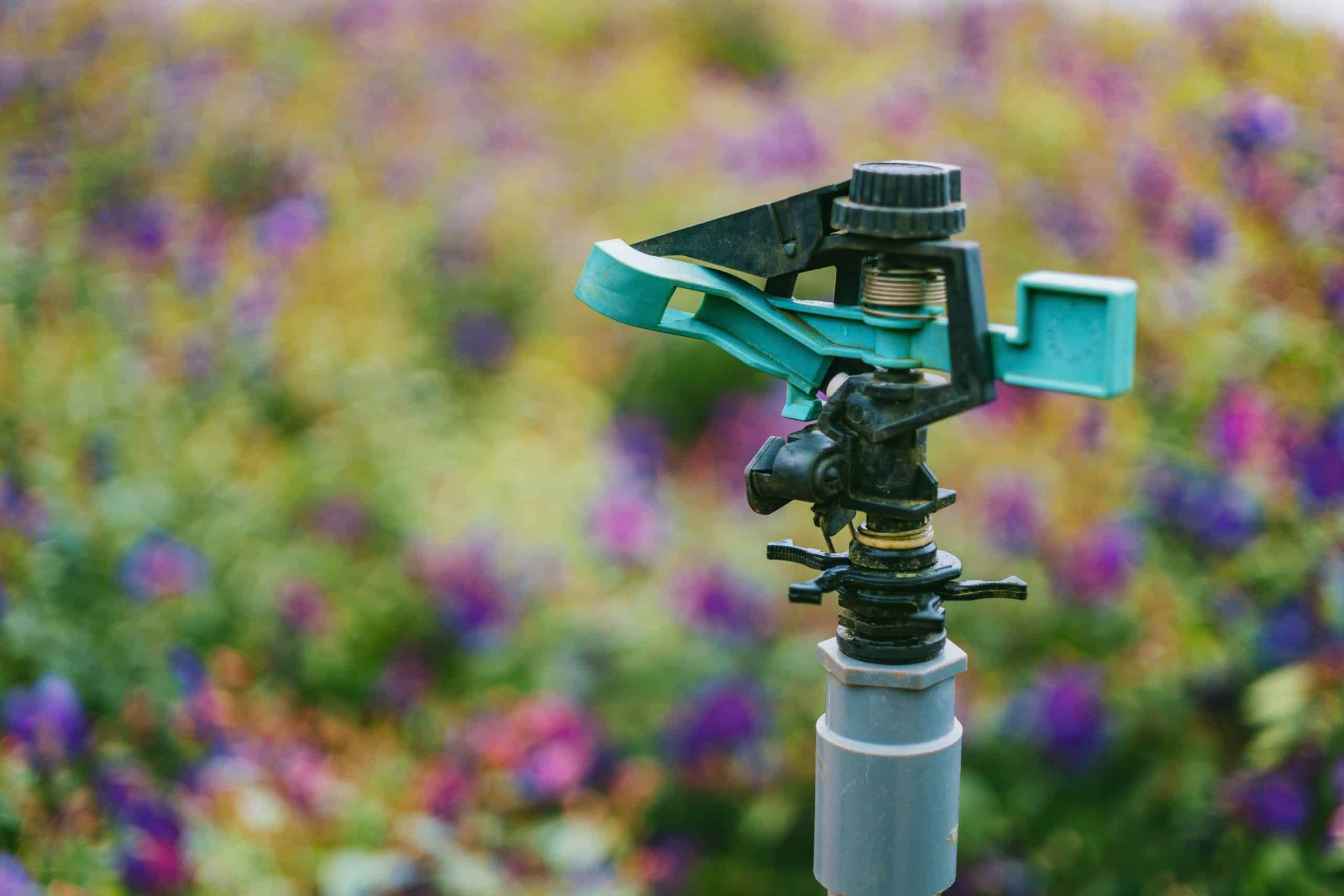 How to Water Your Plants Using an Automatic Sprinkler?