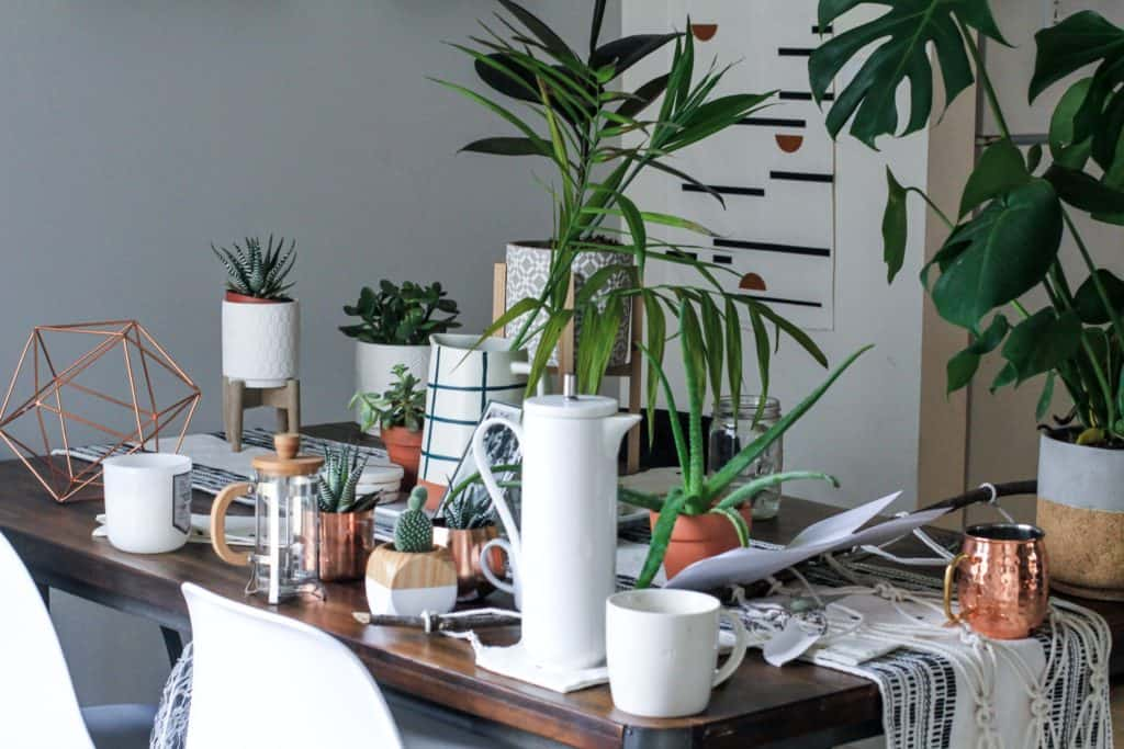 Amazing Decoration Made Of Wood Stand For Plants
