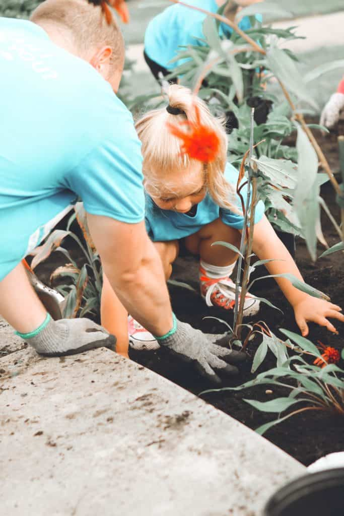 Know The Gardening Importance