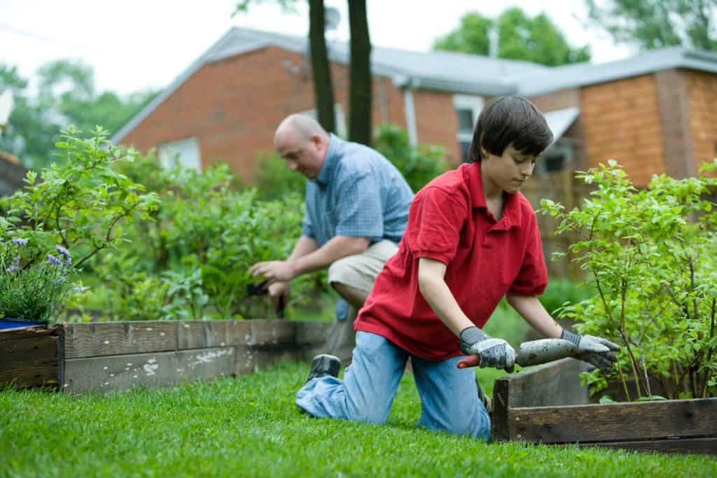 easy gardening tips and tricks