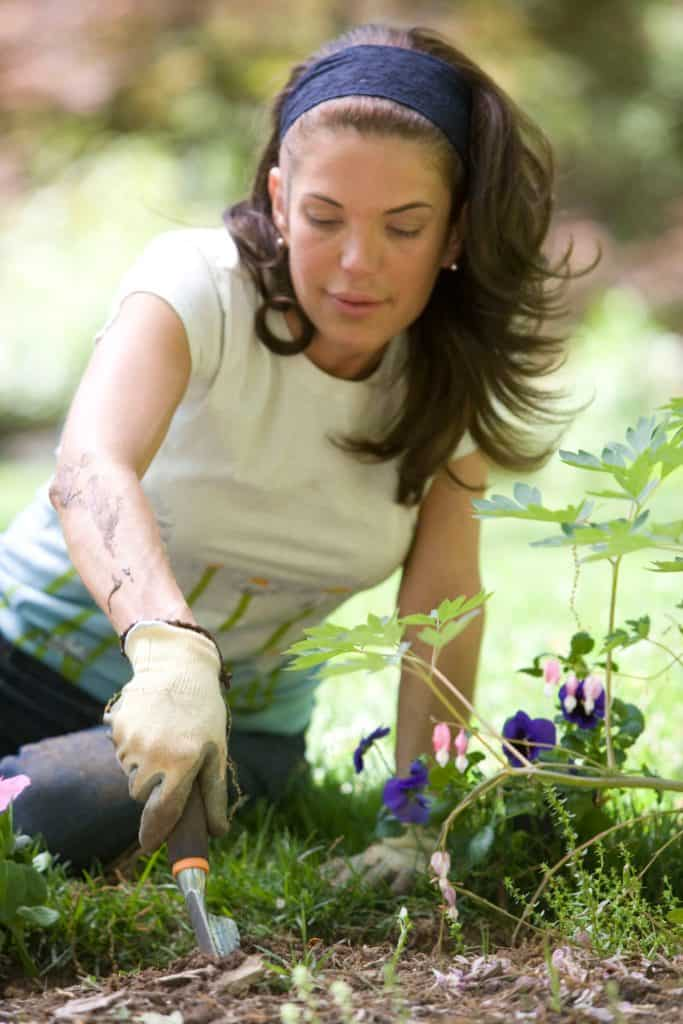 gardening tips to begin at home