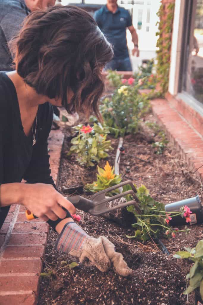 Incredibly Useful Spring Gardening Tips For Beginners