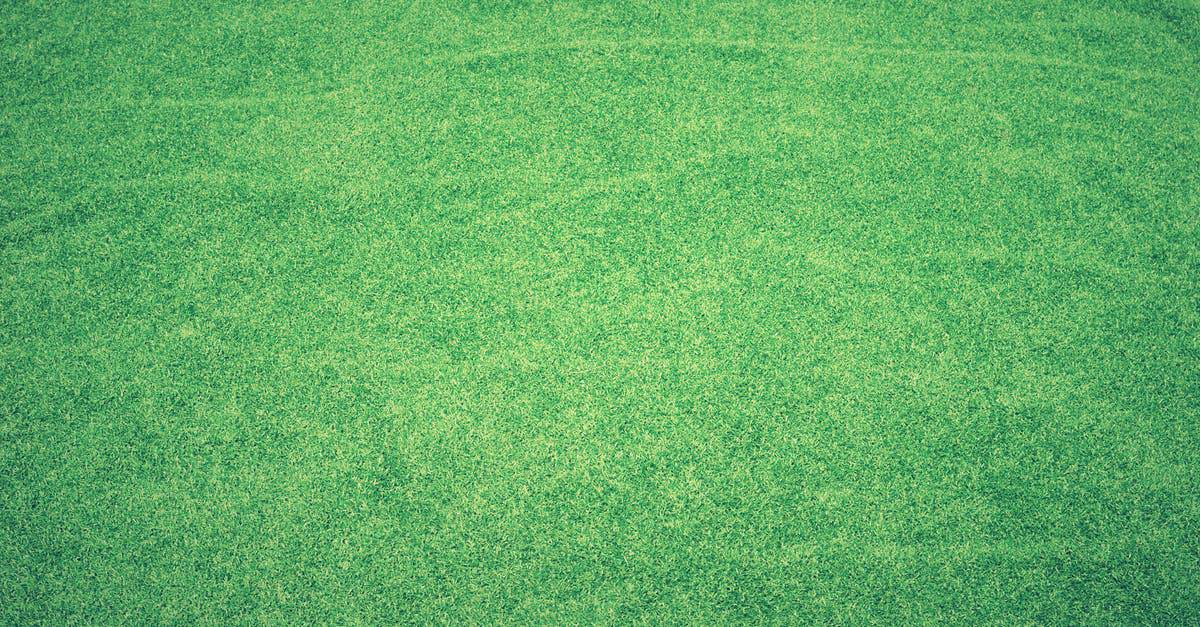 A close up of a green field